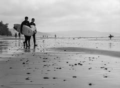 Walking Out (mattm4120) Tags: blackandwhite bw film beach analog mediumformat blackwhite surf surfer surfing ishootfilm 120film bronica analogphotography filmphotography filmisnotdead surfphotography bronicaetrs kodakportra160 beachphotography filmisalive ibelieveinfilm