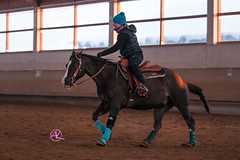 Diana & Flippy (Andreas Krappweis - thanks for 2,5 million views!) Tags: quarterhorse equitation sonyalpha700 dualsfliptopep dianaewald tamronsp70200mm128usd