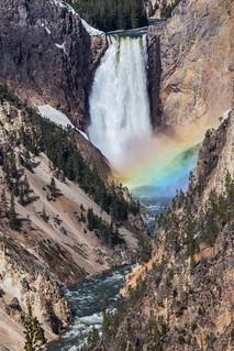 Lower Yellowstone Falls rainbow, Grand Canyon of Yellowstone ( View Large! )