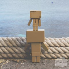 untitled ( Black Orchid ) Tags: blue sea canon toy eos mediterranean rope lipari danbo 550d
