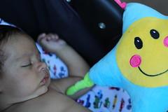 Niez. (S. Noble) Tags: baby kid beb bebe nio nene ternura