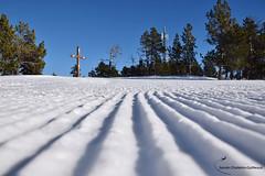 Snow ! :) (Sylvain C-G ) Tags: mountain snow montagne angles neige pyrnesorientales
