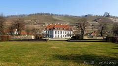 Schloss Wackerbarth oder auch Wackerbarths Ruh' 01 (JeanM.DD) Tags: germany deutschland sachsen schloss ruh radebeul wackerbarth wackerbarths
