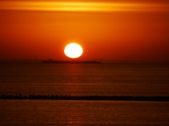 TOESchoUWerS. (Omroep Zeeland) Tags: pier vogels zonsopgang binnenvaart