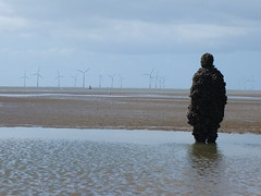 DSCF0728 (SierPinskiA) Tags: sea shells beach liverpool sand ironman pools barnacles ironwork mayday seashore merseyside anthonygormley irishsea 2016 anotherplace crosbybeach blundellsands fujixs1
