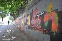 Colors Of The Beast (Trish Mayo) Tags: gnneniyisi thebestofday wallart urbanart bronx grafitti