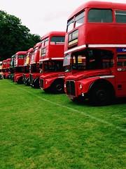 (kieranjames2) Tags: alton bus rally buses aec routemaster london transport regent leyland titan rt rtw rm