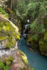 Avalanche Gorge (hoseph22) Tags: nikon sigma montana glacier national park glacial valley