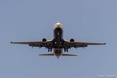 Aterrizando en Sevilla (Photo Valdueza) Tags: avion aterriza ruedas cielo sevilla zoom tarazona avin