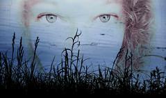 at the lake (Dotsy McCurly) Tags: lake water pond grass grasses lady selfie adobe photoshop nikon d750 nj
