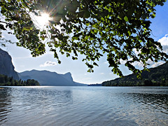 Against the light by the blue lake (rotraud_71) Tags: austria mondsee summer backlight water reflections mountains tree sun obersterreich gegenlicht