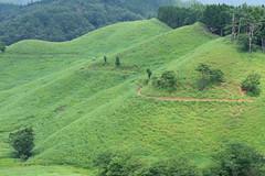 25Tonomine Highland (anglo10) Tags:    field japan