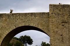 La fotgrafa. Besal, Girona (Rafael Rodrguez.) Tags: gerona girona besal puentemedieval puente medieval