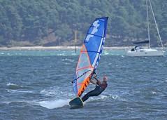 Aug0311a (Mike Millard) Tags: hamworthypark pooleharbour windsurfers