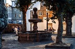 Santiago de Compostela... (Leo ) Tags: plaza gente rboles anochecer farolas luz atardecer piedra urbana santiago compostela galicia