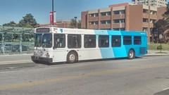 York Region Transit #903 (BramptonTransitFan84) Tags: yorkregiontransit yrt newflyer d40lf toronto