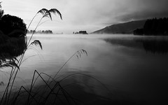 Smoke On Water... (setoboonhong) Tags: nature outdoor landscape bw mist early morning calm water reeds silhouettes soft light peaceful hard rock song deep purple smoke on travel