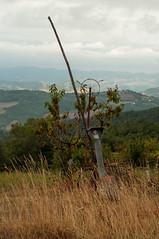 Madonna dei Fornelli (Eleonora Sacco   Pain de Route) Tags: via degli dei turismo toscana emilia romagna bologna firenze appennino betulle
