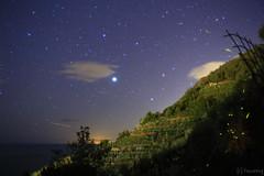 Vernazza, Cinque Terre (tomosang R32m) Tags: cinqueterre  liguria   laspezia 5terre vernazza  italia italy   yakei night longexposure   firefly  beach coast village travel trekking  star