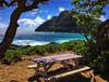 Take Five! (jcc55883) Tags: makapuu makapuubeach makapuupoint sky clouds ocean pacificocean sea bench hawaii oahu waimanalo ipad ipadair snapseed
