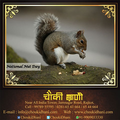 Happy Nut Day (ChoukiDhani) Tags: nutday celebration creamy chrunchy dish healthy nutritious snacks delicious resort hotel motel restaurant daily routine