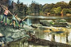 It's Selfie Time (Rana Dee) Tags: selfies conceptualphotography water river tree crocodile edge nature art sydneyphotographer