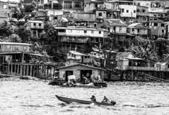 Manaus (felipe sahd) Tags: city cidade brasil noiretblanc manaus amazonas rionegro 123bw