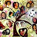"""Family Tree with Obamas, Kahlo, O'Keeffe and Carr • <a style=""""font-size:0.8em;"""" href=""""http://www.flickr.com/photos/55284268@N05/15891323803/"""" target=""""_blank"""">View on Flickr</a>"""