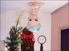 Christmas Tree Whisperer ...