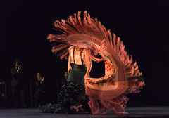 Manuel Lin (DanceTabs) Tags: uk costumes london dance dancers dancing stage performance dancer entertainment spanish staged tomate flamenco staging alegrias sadlerswells maledancer nmada femaledancer josemaldonado miguellavi miguelortega davidcarpio manuellin londonflamencofestival2015 aguedasaavedra anabelmoreno compaamanuellin franciscovinuesa inmaculadaaranda jnatanmiro victormarquezel