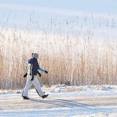 Mark hur var skugga, mark Movitz mon frere (Kalense Kid) Tags: road winter shadow snow ice reeds landscape sweden walkers reedbed matfors vsternorrland skedvik