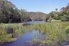 Hacking River (everyday sh⊙_☉ter) Tags: park beach forest sydney waterfalls kookaburra wattamolla garie royalnationalpark audley stanwell hackerriver