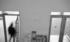 정문 (형수) Tags: 사람 흑백 문 제2공학관 행인 안암 이공캠
