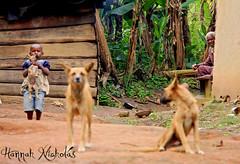 Girl in Kanyawarra Village, Uganda 3 (Hannah Nicholas Photography) Tags: travel people uganda developingcountry travelphotography africanvillage africangirl hannahnicholas kanyawarra hannahnicholasphotography
