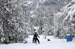 5 (ljubar) Tags: sneg divčibare