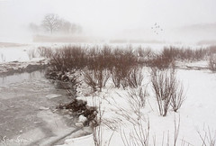 Winter at Cox Reservation (Krista.Q) Tags: winter snow water landscape ma northshore capeann