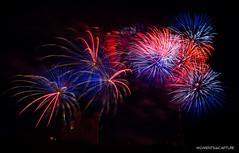 Bleu, blanc, rouge ! (oncle_john) Tags: feuxdartifice fireworks 14juillet ftenationale lyon rhone nuit night nightshot onclejohn canon 5d mark3 5d3 mk3 momentsdecapture basilique fourvire bleu blanc rouge