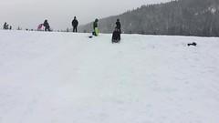 sledding at white river (dolanh) Tags: winter snow renee whiteriver sledding snopark mthoodwilderness whiteriversnopark