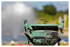 Envol  (bernard78br) Tags: 5dsr 70200exsigma canon castleofversailles chateaudeversailles dxo eos lightroom6 logicieltraitementimages objectifsreflex photographie sigma versailles ville