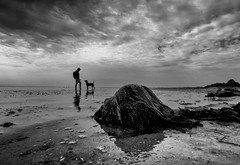 Communication (Dan-Schneider) Tags: blackandwhite bw best beach schwarzweiss scene schneider silhouette sky sea silence sun clouds olympus omdem10 moment monochrome mood einfarbig light minimalism mirror reflection mft nature lens island dog human people photography prime