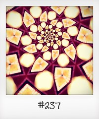 """#DailyPolaroid of 22-5-16 #237 • <a style=""""font-size:0.8em;"""" href=""""http://www.flickr.com/photos/47939785@N05/27940340030/"""" target=""""_blank"""">View on Flickr</a>"""