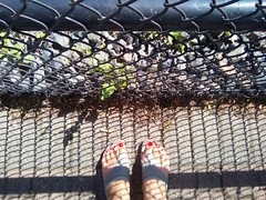 The red toes by the fence... (Beeke...) Tags: light shadow abstract feet lines fence