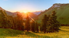Lever de Soleil entre les montagnes (Emotions-photo.ch) Tags: morning blue trees light summer sky orange sun mountain tree green beautiful yellow forest sunrise suisse fribourg sunbeam herb ch chtelsaintdenis