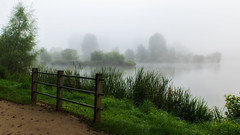 Beauty of morning lights (sdejongh) Tags: 2016 beauty gygo july lake mist nature
