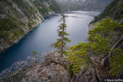 Lake Angeline (Mark Griffith) Tags: alpinelakeswilderness backpacking fosslakeshighroute hike hiking mtbakersnoqualmienationalforest scouts sonya7rii traverse voigtlanderf4515mmiii washington 20160802dsc08273 flhrdaytwo