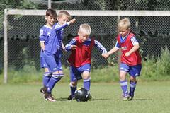 Feriencamp Neumnster 28.07.16 - b (33) (HSV-Fuballschule) Tags: hsv fussballschule feriencamp neumnster vom 2507 bis 29072016