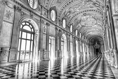 Venaria Reale Torino Italy (pistacchiop) Tags: 1018 100d monocromo bw canon torino reale reggia venaria italy italia