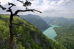 Breathtaking view from Banjska stena, Tara National Park (Andrey Sulitskiy) Tags: serbia tara drina