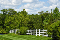 side of road fence HFF! (Dotsy McCurly) Tags: happy fence friday hff trees blue sky clouds nature beautiful dof nikon d750 nj mowed grass