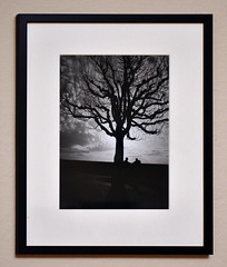Late summer (p2-r2) Tags: nikon fa film printed mounted darkroom blackandwhite